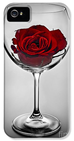 Blooms iPhone 5 Cases - Wine glass with rose iPhone 5 Case by Elena Elisseeva