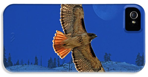 Red Tailed Hawk iPhone 5 Cases - Wings iPhone 5 Case by Donna Kennedy