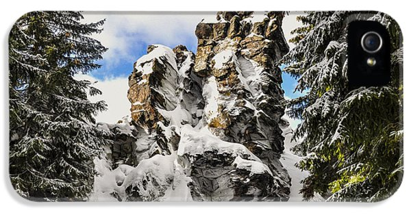 Forrest iPhone 5 Cases - Winter at the Stony Summit iPhone 5 Case by Aged Pixel