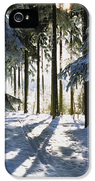 Forrest iPhone 5 Cases - Winter Landscape iPhone 5 Case by Aged Pixel