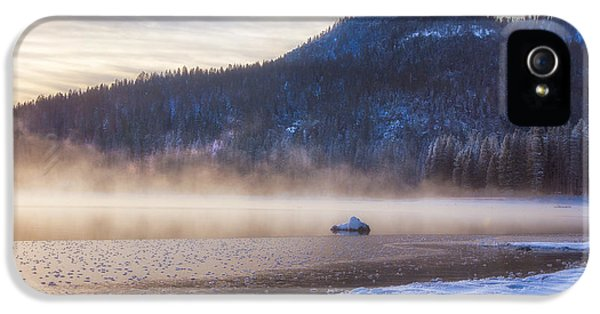 Winter iPhone 5 Cases - Winter Mist iPhone 5 Case by Anthony Bonafede