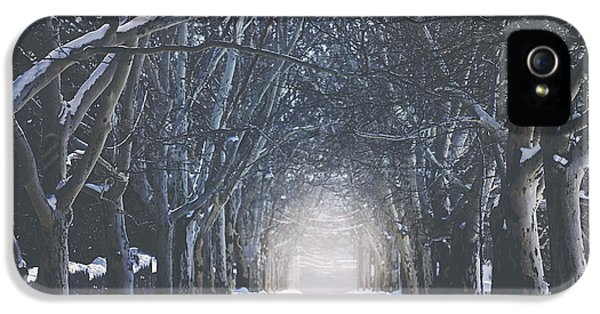 Winter Road IPhone 5 / 5s Case by Carrie Ann Grippo-Pike