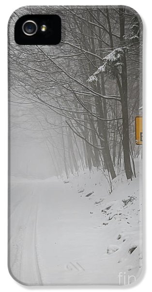 Condition iPhone 5 Cases - Winter road during snowfall I iPhone 5 Case by Elena Elisseeva