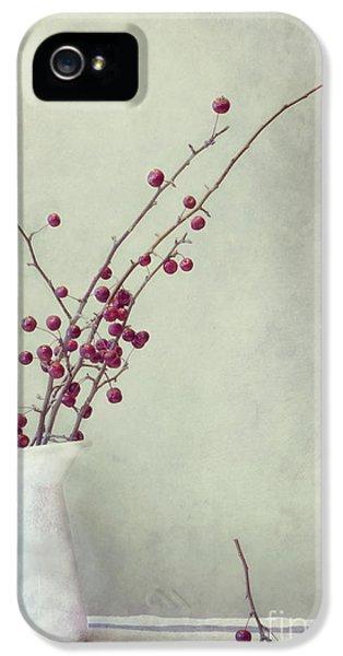 Still-life iPhone 5 Cases - Winter Still Life iPhone 5 Case by Priska Wettstein