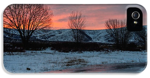 Pink Sunrise iPhone 5 Cases - Winter Sunrise iPhone 5 Case by Chad Dutson