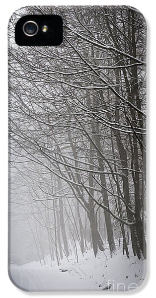Condition iPhone 5 Cases - Winter trees along snowy road iPhone 5 Case by Elena Elisseeva