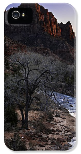 Blue Trees iPhone 5 Cases - Winter Watchman iPhone 5 Case by Chad Dutson