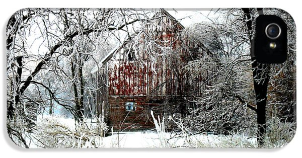Agriculture iPhone 5 Cases - Winter Wonderland iPhone 5 Case by Julie Hamilton
