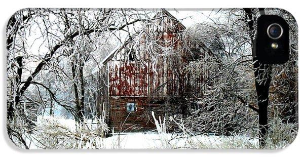 Farmland iPhone 5 Cases - Winter Wonderland iPhone 5 Case by Julie Hamilton
