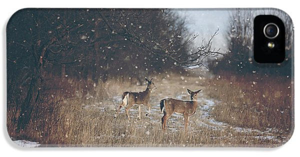 Winter Wonders IPhone 5 / 5s Case by Carrie Ann Grippo-Pike