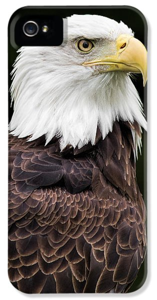 With Dignity IPhone 5 / 5s Case by Dale Kincaid