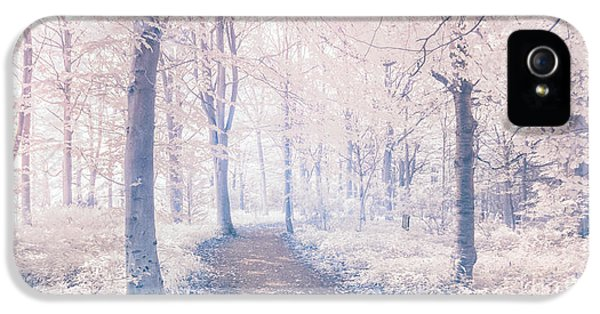 Infrared iPhone 5 Cases - Wodland walk iPhone 5 Case by Janet Burdon