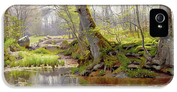 Scandinavian iPhone 5 Cases - Woodland Pond iPhone 5 Case by Peder Monsted