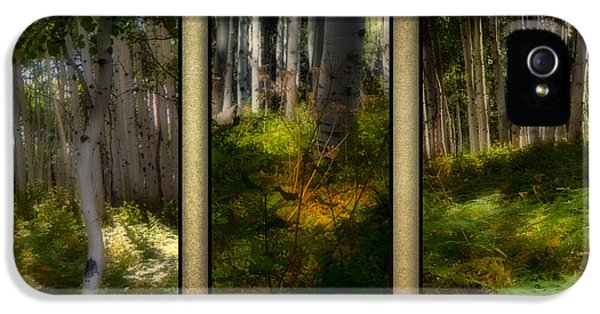 Chlorophyll iPhone 5 Cases - Woodlands - Triptych iPhone 5 Case by Ellen Heaverlo