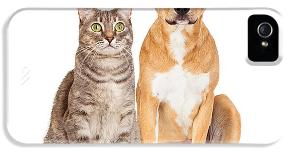 Indoors iPhone 5 Cases - Yellow Dog and Tabby Cat iPhone 5 Case by Susan  Schmitz