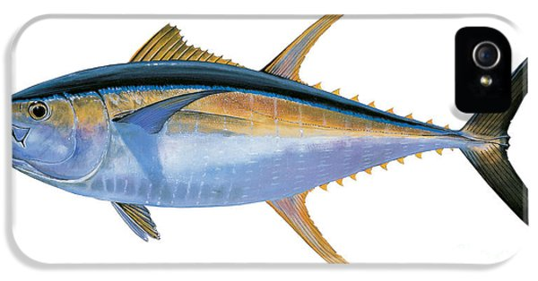 Yellowfin Tuna IPhone 5 / 5s Case by Carey Chen