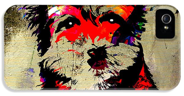 Yorkshire Terrier  IPhone 5 / 5s Case by Marvin Blaine
