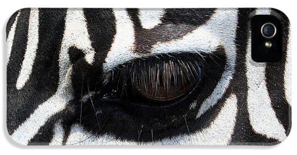 Zebra Eye IPhone 5 / 5s Case by Linda Sannuti