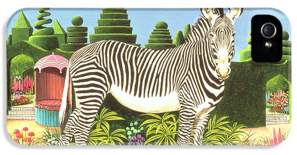Zebra In A Garden IPhone 5 / 5s Case by Anthony Southcombe