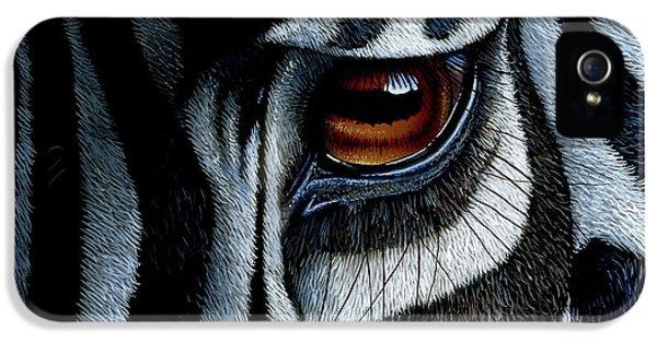 African iPhone 5 Cases - Zebra iPhone 5 Case by Jurek Zamoyski