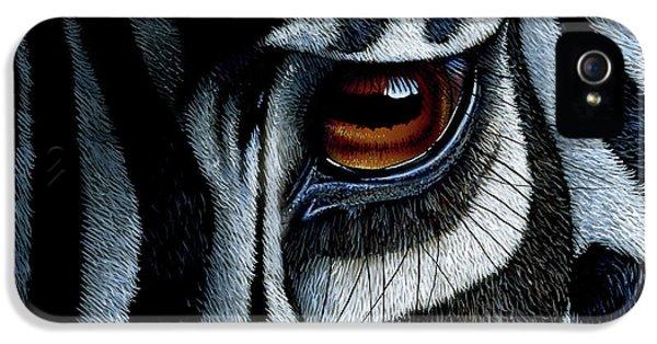 Eyes iPhone 5 Cases - Zebra iPhone 5 Case by Jurek Zamoyski