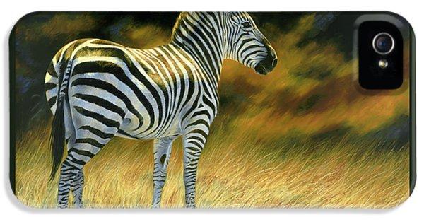 Zebra IPhone 5 / 5s Case by Lucie Bilodeau