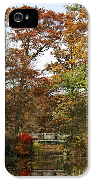 Blue Tree iPhone 5 Cases - Autumn forest iPhone 5 Case by Angela Doelling AD DESIGN Photo and PhotoArt