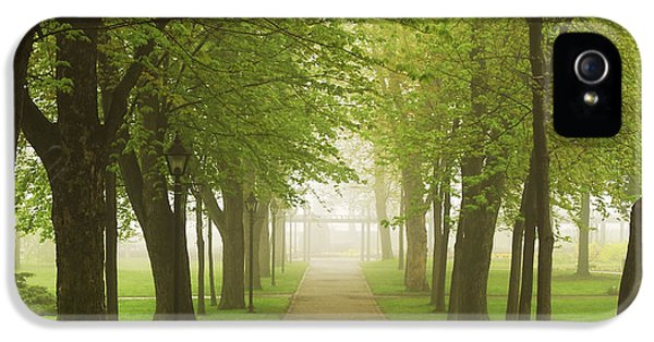 Green iPhone 5 Cases - Foggy park iPhone 5 Case by Elena Elisseeva