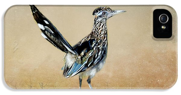 Greater Roadrunner IPhone 5 / 5s Case by Betty LaRue