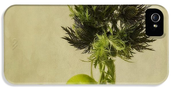 Still-life iPhone 5 Cases - Green Apples And Blue Thistles iPhone 5 Case by Priska Wettstein