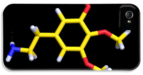 Alkaloid iPhone 5 Cases - Mescaline Molecule iPhone 5 Case by Dr Tim Evans