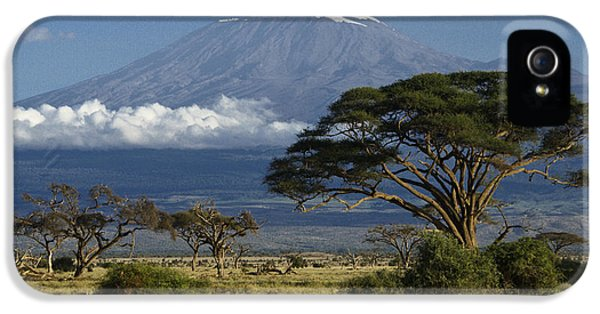 African iPhone 5 Cases - Mount Kilimanjaro iPhone 5 Case by Michele Burgess