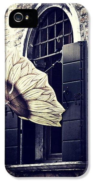 Umbrella iPhone 5 Cases - Umbrella iPhone 5 Case by Joana Kruse