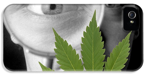 Addictive Drug iPhone 5 Cases - Cannabis Research iPhone 5 Case by Victor De Schwanberg