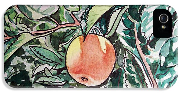 Sketch iPhone 5 Cases - Apple Tree Sketchbook Project Down My Street iPhone 5 Case by Irina Sztukowski