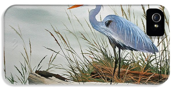 Framed iPhone 5 Cases - Beautiful Heron Shore iPhone 5 Case by James Williamson