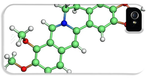 Alkaloid iPhone 5 Cases - Berberine Molecule iPhone 5 Case by Dr Tim Evans