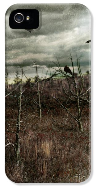Circling iPhone 5 Cases - Black Birds in Spiky Trees iPhone 5 Case by Jill Battaglia