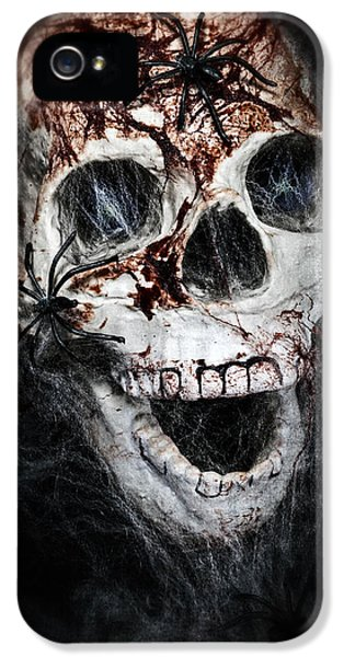 Spider iPhone 5 Cases - Bloody Skull iPhone 5 Case by Joana Kruse