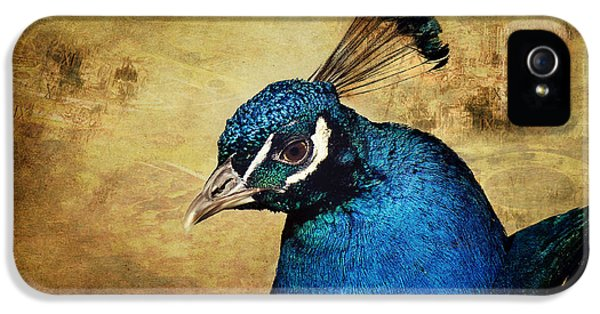 Blue Bird iPhone 5 Cases - Blue Peacock iPhone 5 Case by Angela Doelling AD DESIGN Photo and PhotoArt