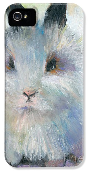 Bunny iPhone 5 Cases - Bunny Rabbit painting iPhone 5 Case by Svetlana Novikova