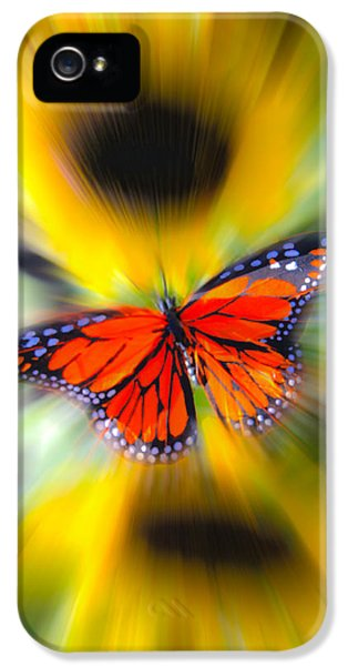 Cone Flowers And Butterflies iPhone 5 Cases - Butterfly Motion iPhone 5 Case by Steve McKinzie