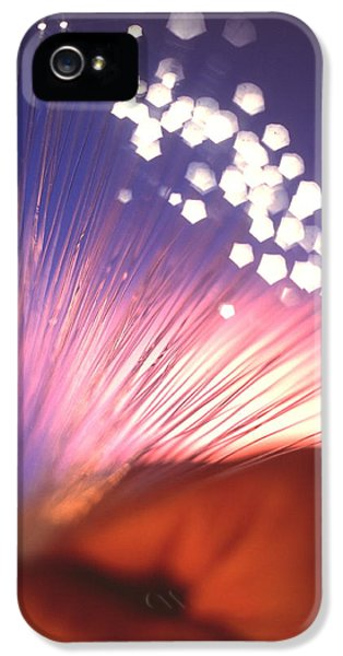 Fibre iPhone 5 Cases - Cables Of Optical Fibres Conducting Light iPhone 5 Case by Tek Image