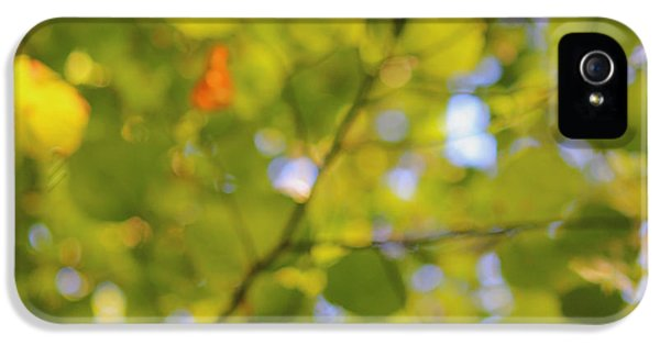 Chlorophyll iPhone 5 Cases - Chlorophyll Daydream iPhone 5 Case by Andrew Pacheco