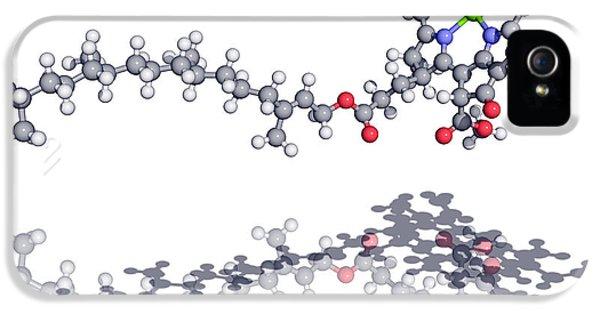 Chlorophyll iPhone 5 Cases - Chlorophyll Molecule iPhone 5 Case by Laguna Design