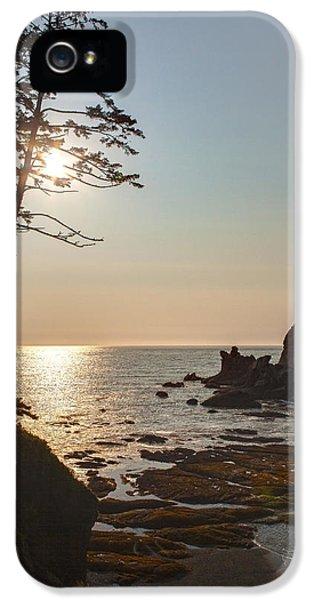 Oregon Coast iPhone 5 Cases - Coastal Sunstar iPhone 5 Case by Mike Reid