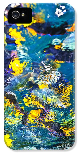 Feeding iPhone 5 Cases - Colorful tropical fish iPhone 5 Case by Elena Elisseeva