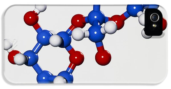 Molecular Graphic iPhone 5 Cases - Computer Graphic Of A Molecule Of Sucrose iPhone 5 Case by Laguna Design
