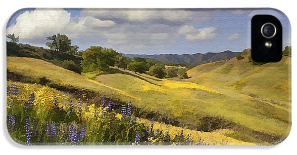 Field iPhone 5 Cases - Cottonwood Canyon iPhone 5 Case by Sharon Foster