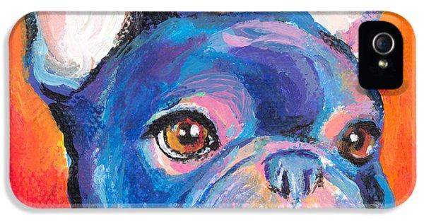 Gift iPhone 5 Cases - Cute French bulldog painting prints iPhone 5 Case by Svetlana Novikova